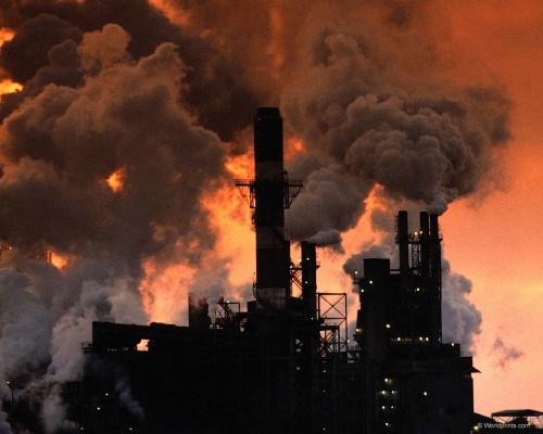 В глобальном потеплении виноват человек