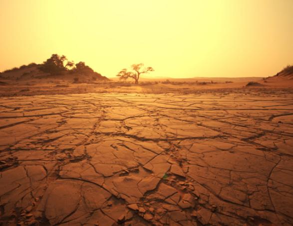 Как появляются пустыни?