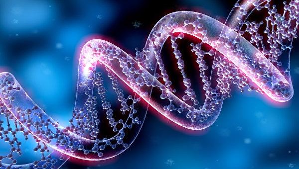 Редактирование ДНК человека