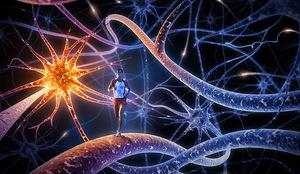 Модели сознания