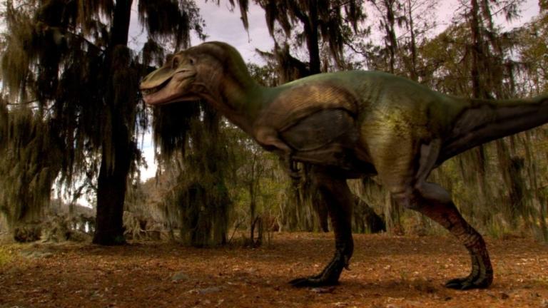Альбертозавр