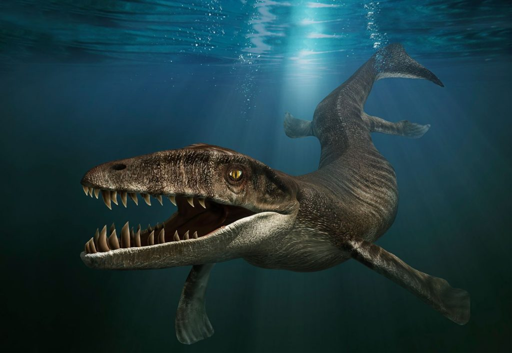 Дакозавр, или морской крокодил