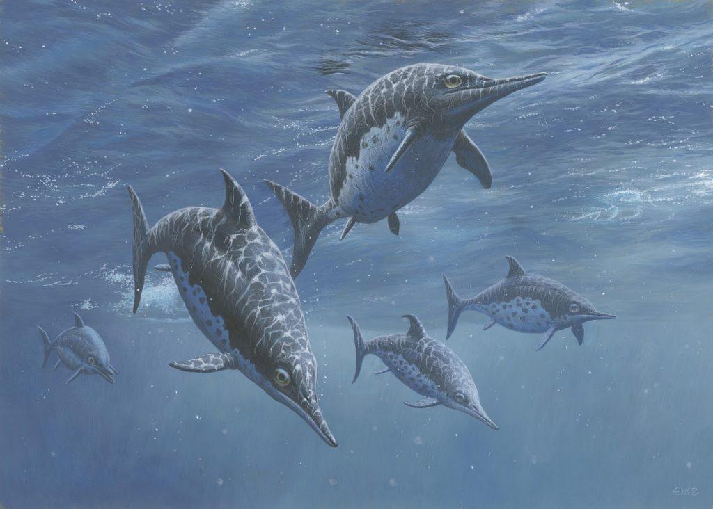 Ихтиозавр, или рыбоящер