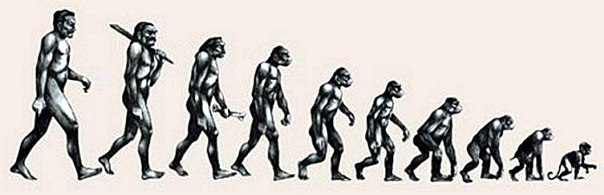 картинка от обезьяны к человеку