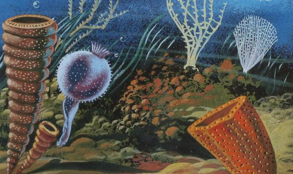 Море силурийского периода