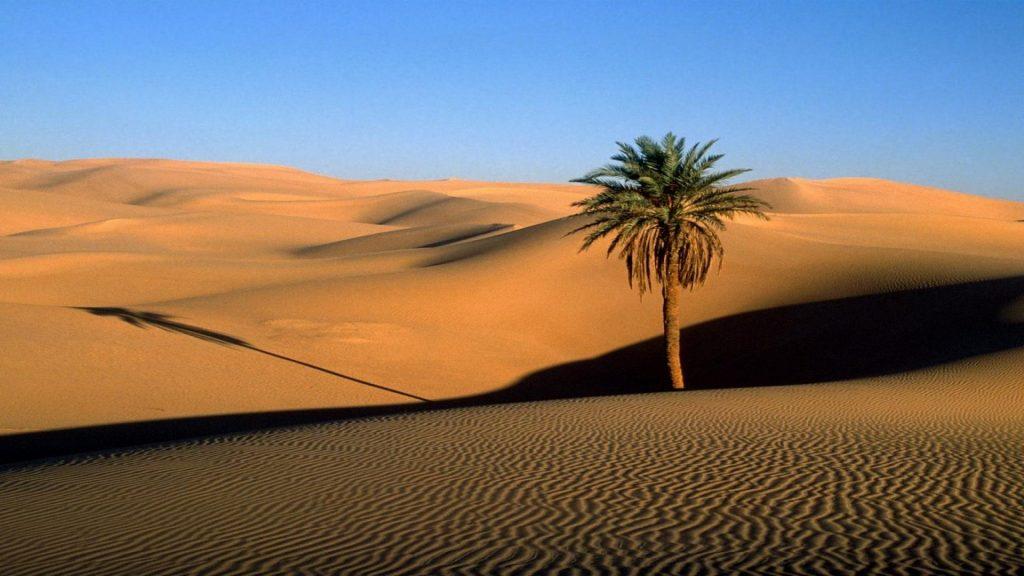 Наступление пустыни - планета превращается в сахару?