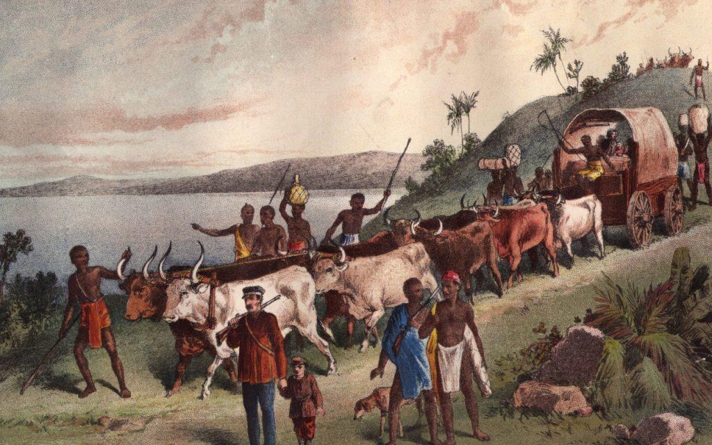Дэвид Ливингстон: путешествие по Африке