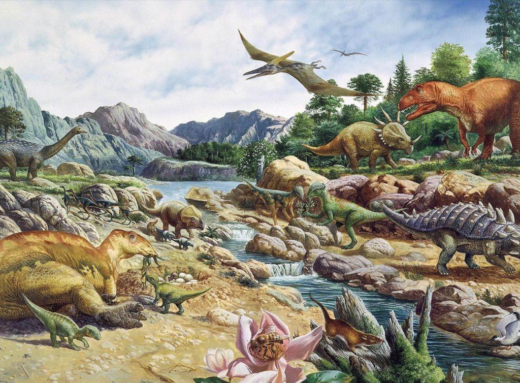 Темпы эволюции на планете