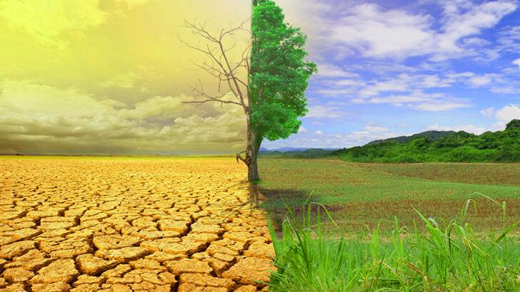 Климатические циклы и аномалии