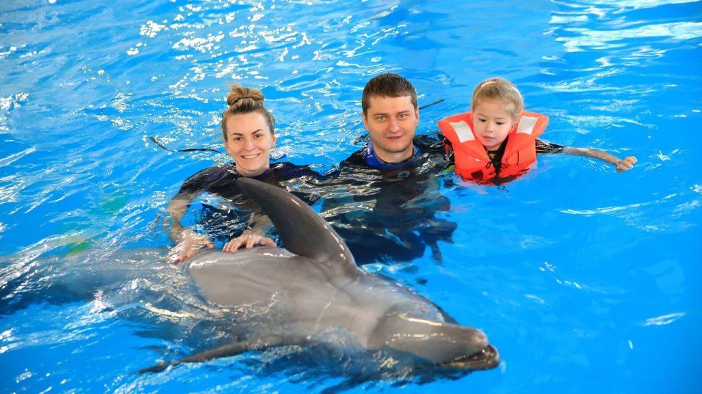 Дельфинье целительство