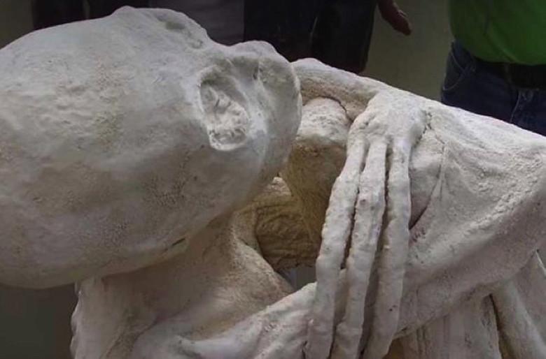 Обнаружена мумия пришельца?!