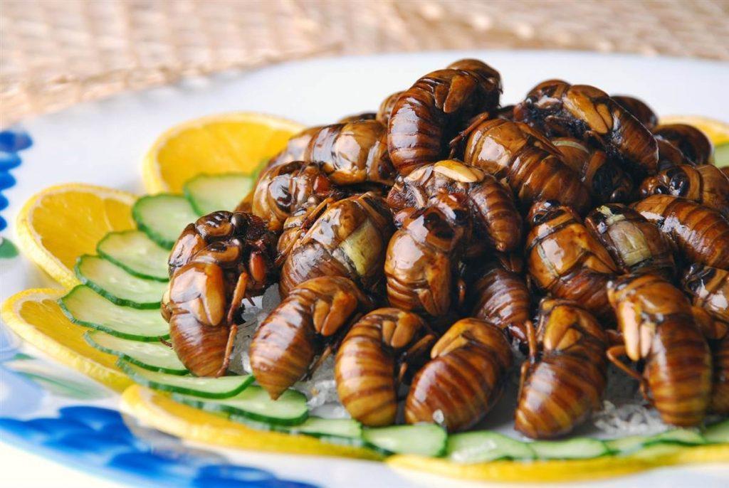Физиологических препятствий для употребления насекомых в пищу нет