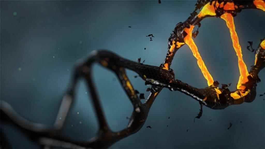 ДНК космонавта: мутации вызванные пребыванием в космосе
