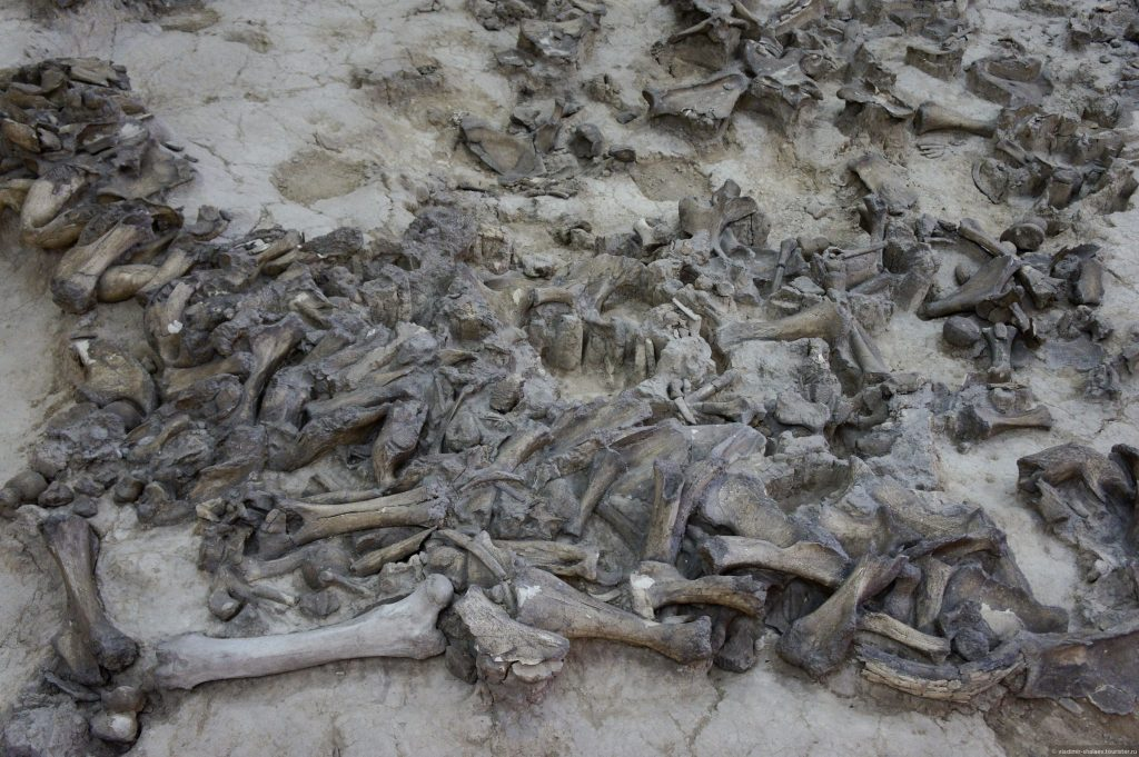 Костенки - колыбель европейской цивилизации