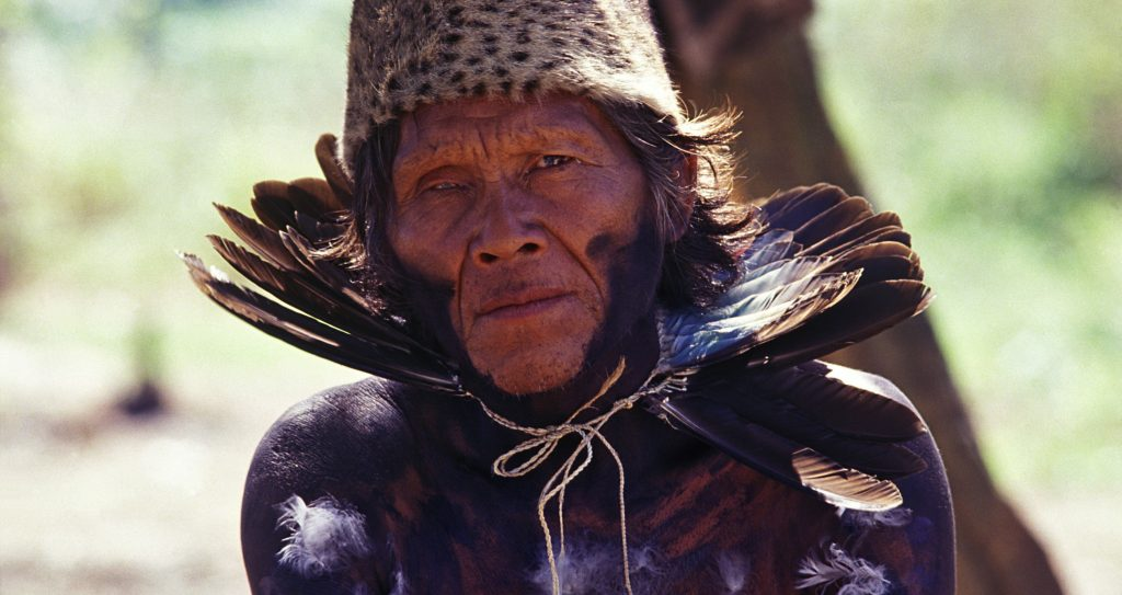 Айорейо протестуют против вырубки лесов