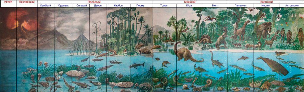 Эволюция жизни: как развивались новые формы жизни на Земле