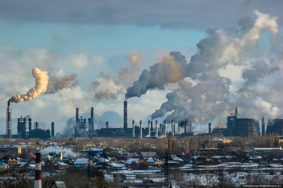 Плохая экология делает нас глупее