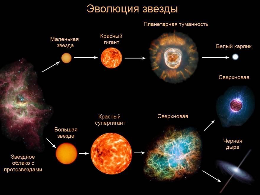 Какие бывают звёзды — современный взгляд