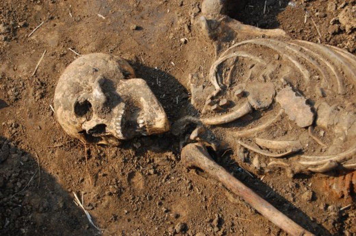 Археологи нашли древнюю жертву казни