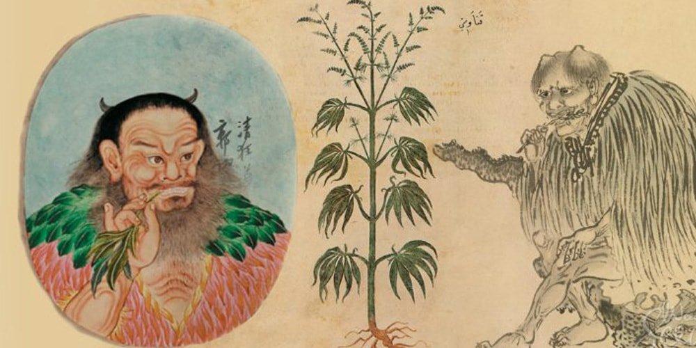 Конопля из Древнего Китая