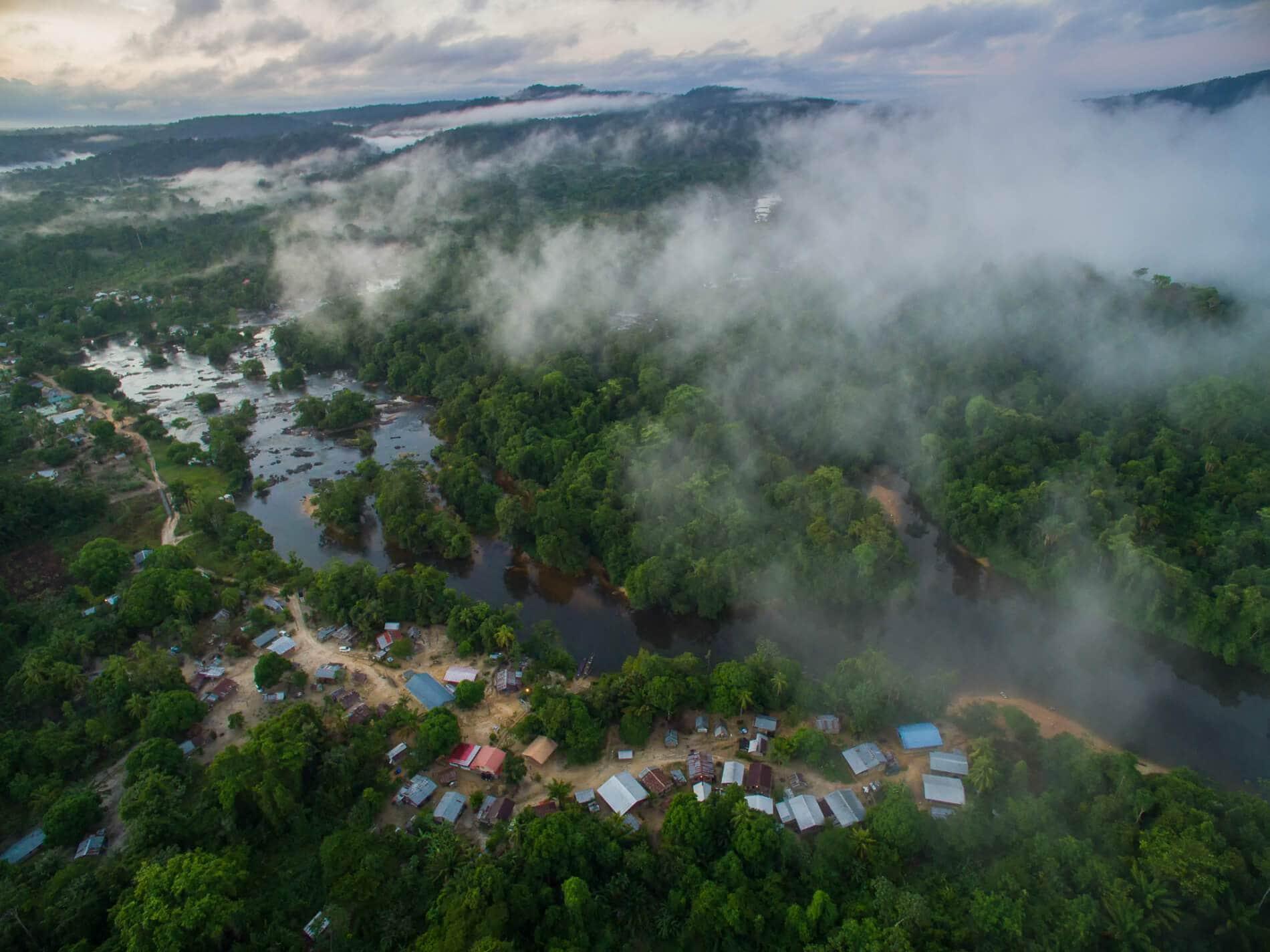 Суринам - сплошные джунгли