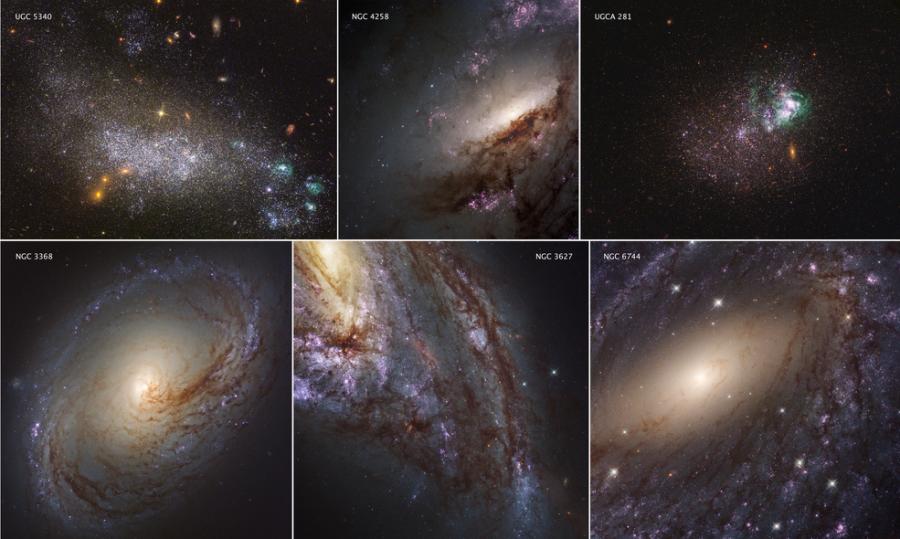 Ультрафиолетовый каталог окрестностей Галактики