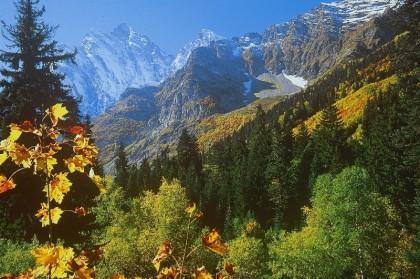 Северный макросклон Кавказа