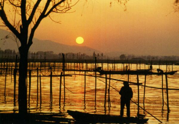 Рыбная ловля процветает на Тайху, несмотря на не самую благоприятную экологическую обстановку.