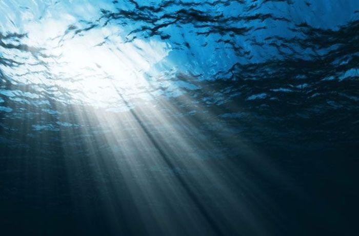 Какие тайны хранит океан?