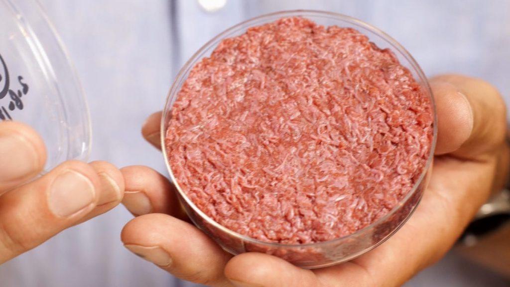 Мясо из пробирки: как ученые накормят человечество