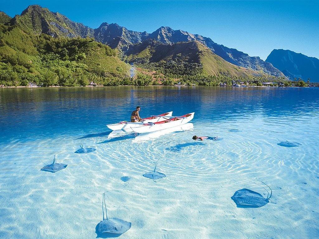 Отдых в Доминикане: проведи свой отпуск в раю