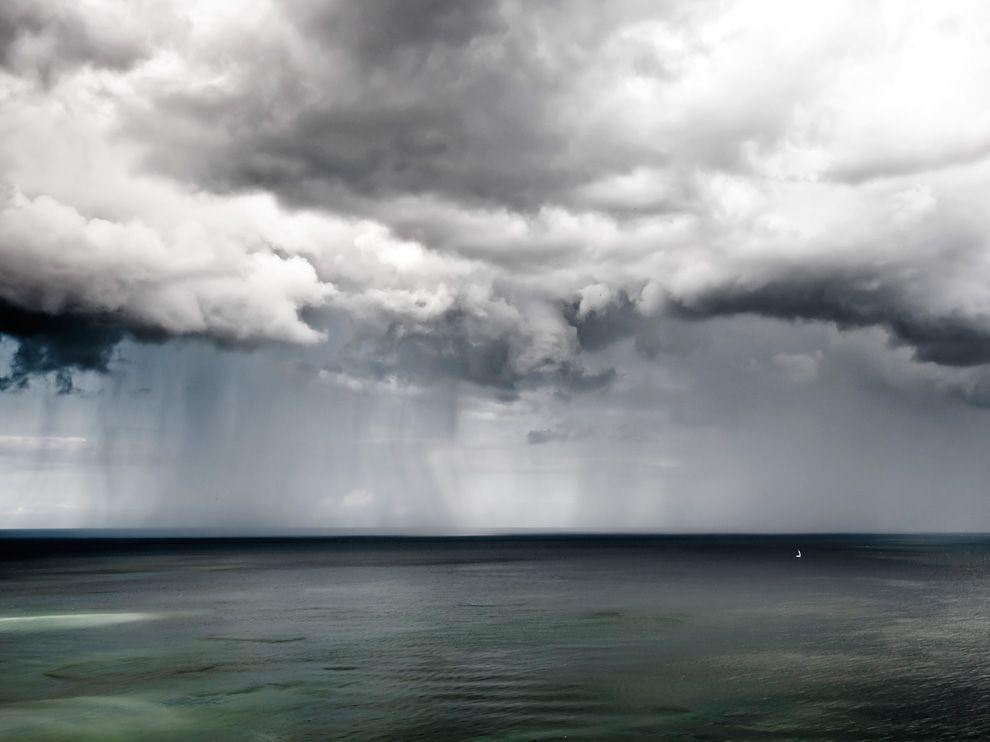 Жители пульсирующего моря