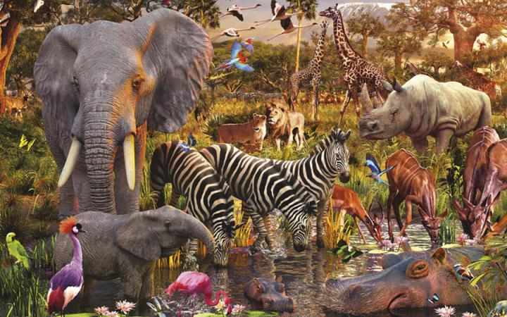 Вымирание видов на планете