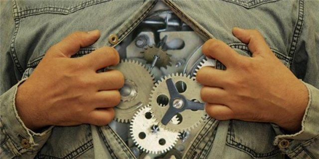 Как работают наши биологические часы