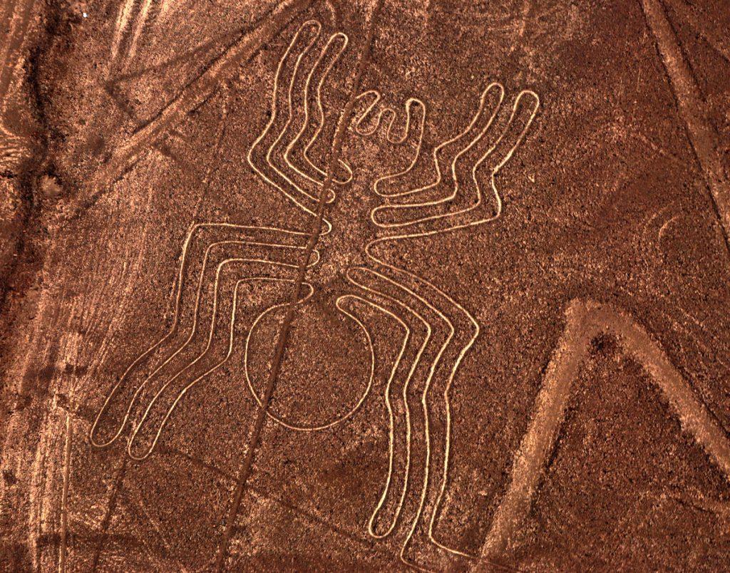 Новые рисунки плато Наска