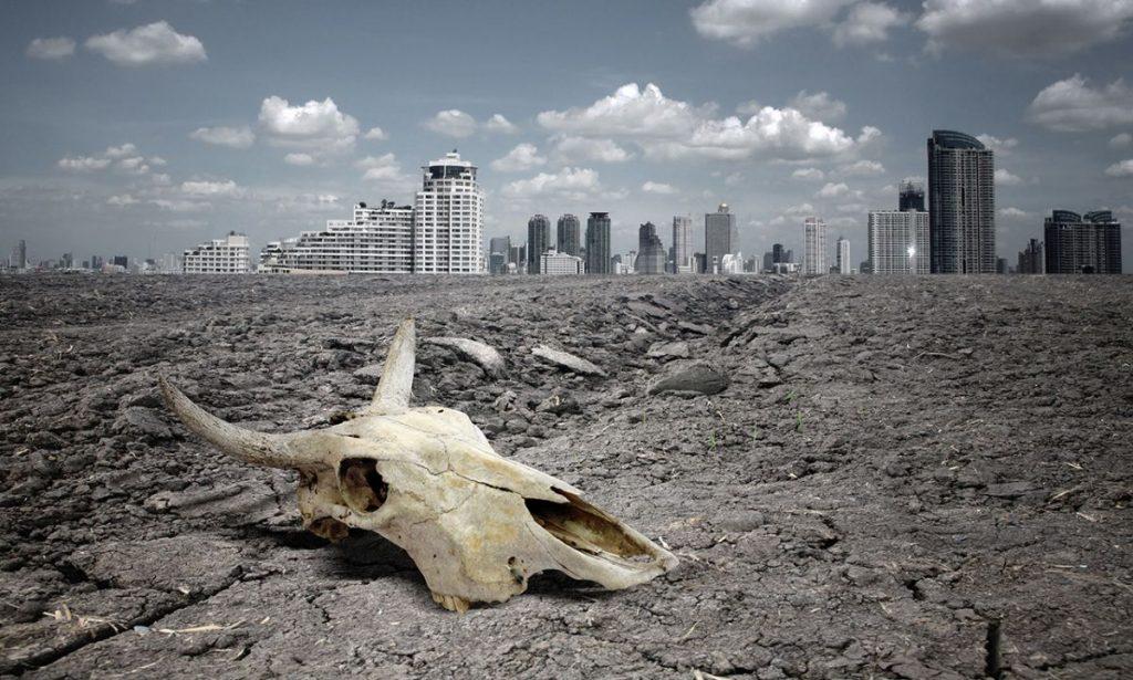 Великое вымирание видов не за горами