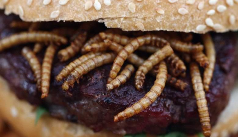 Вкусные и полезные котлеты из червей