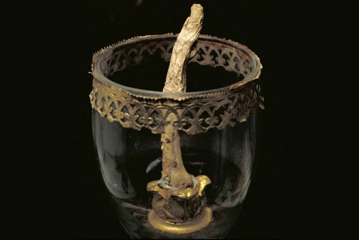 Найдены пропавшие пальцы Галилея