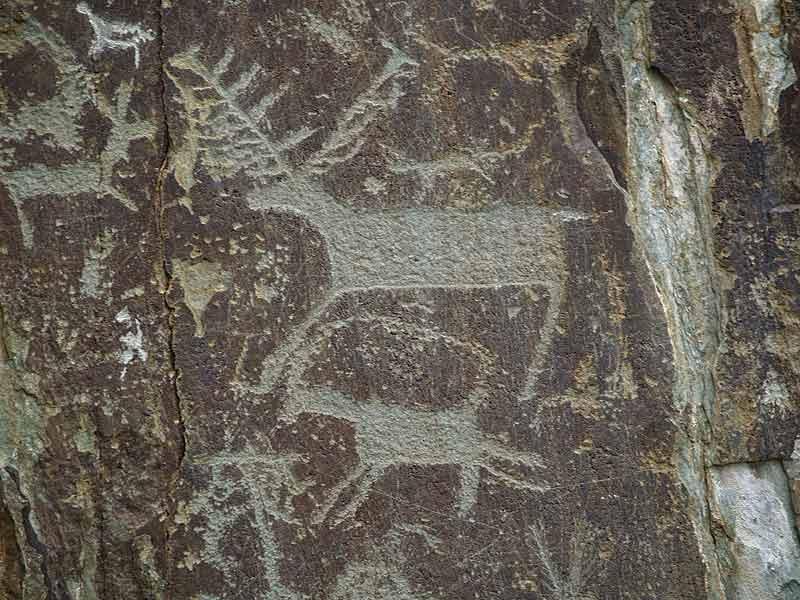 На Алтае обнаружены неизвестные ранее петроглифы