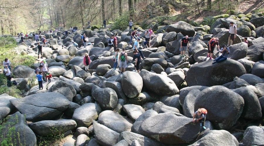 Каменистое море в Германии