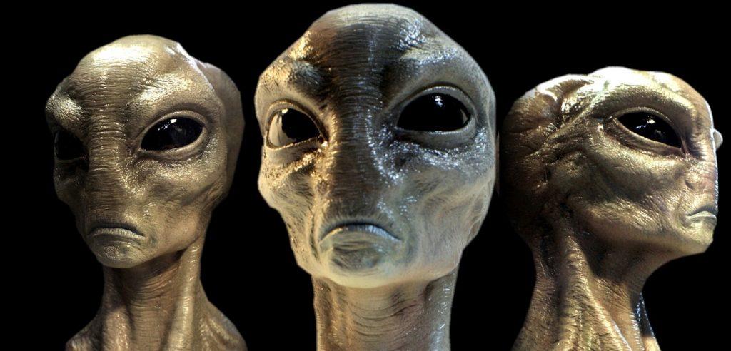 Наши предки - рептилии