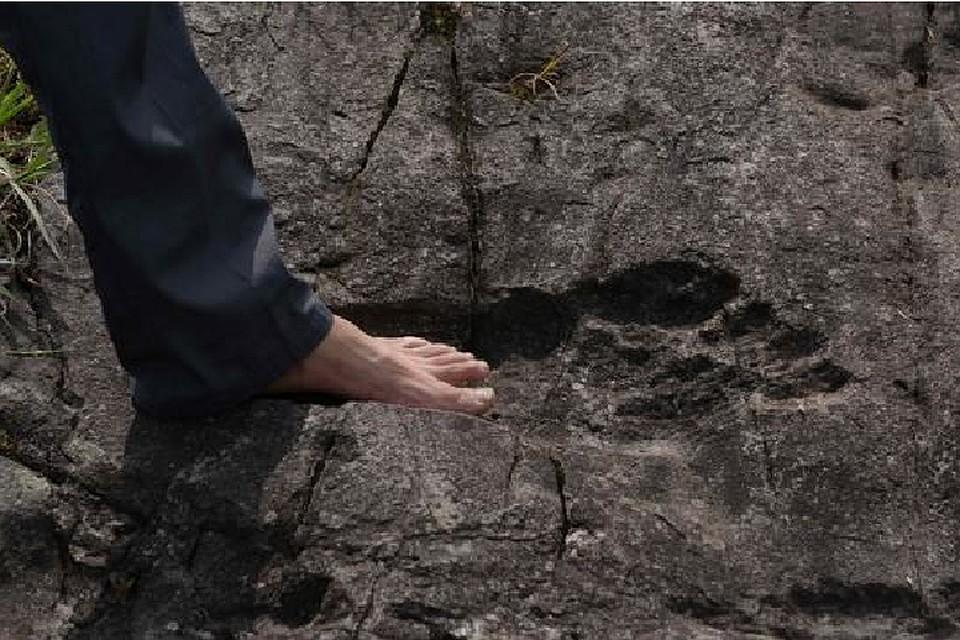 Окаменевшие следы великана