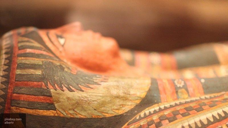 Тайна «мумии сокола»
