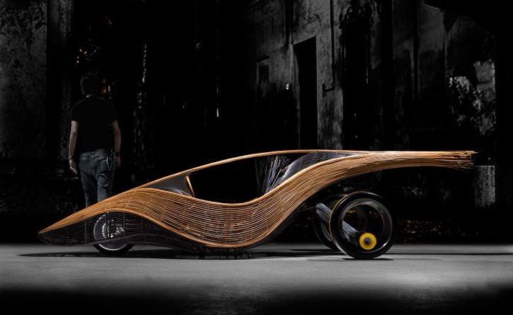 Автомобиль из бамбука