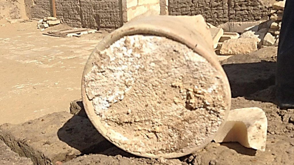 Древнеегипетский сыр
