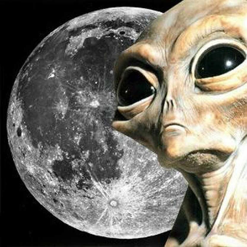 Луна обитаема: что скрывает NASA