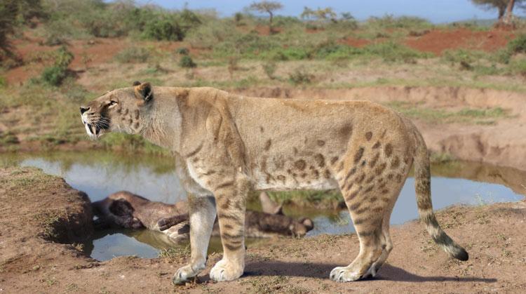 Нунда - чупакабра Африки