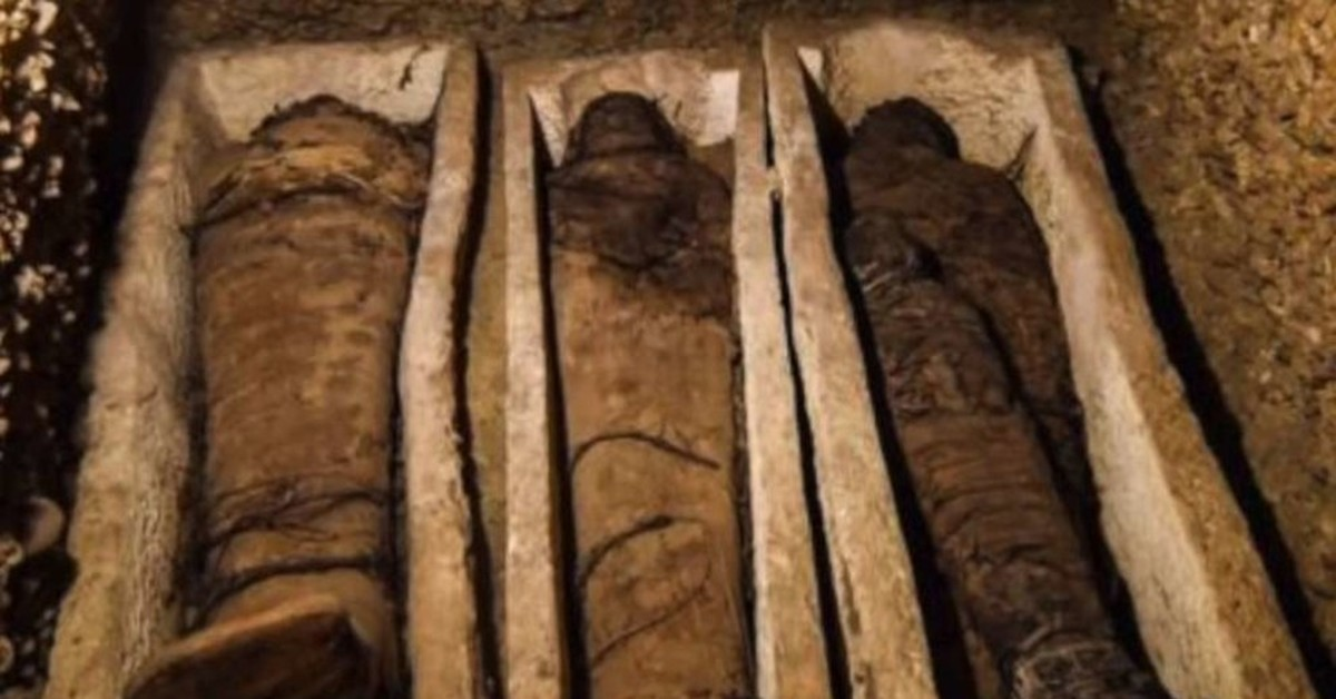 Египетских мумий прибыло