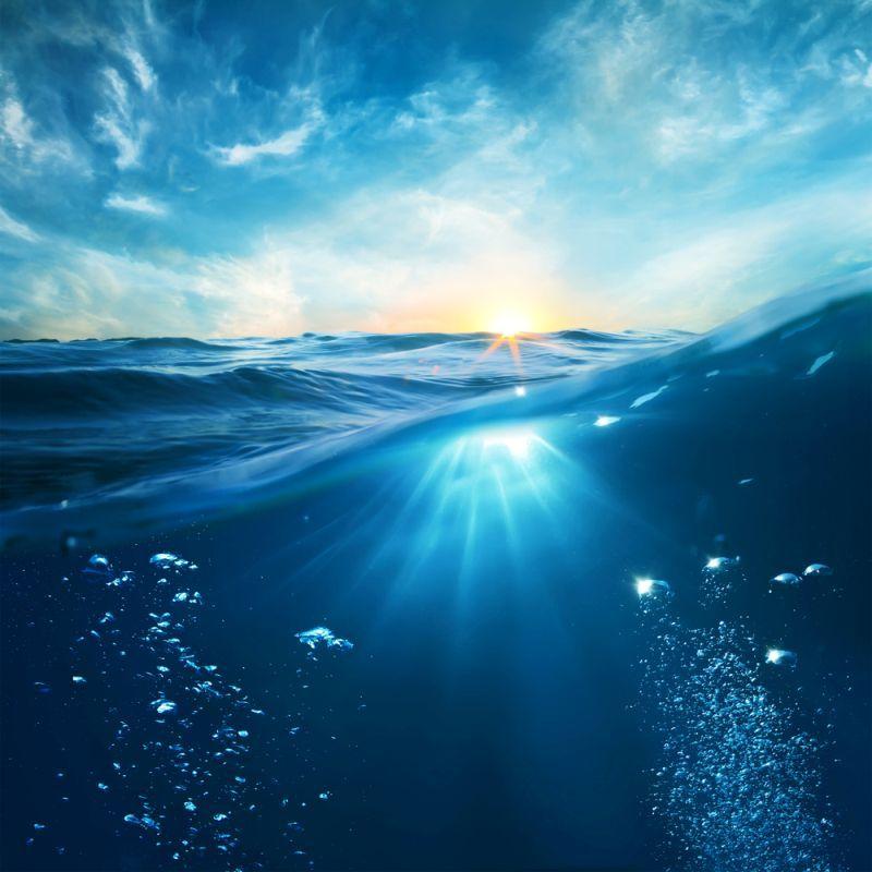 Смерть на дне океанов. Ученые предупредили о возможности глобального катаклизма