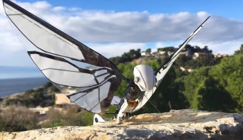 Французский инженер создал робота-бабочку, способного летать благодаря крыльям